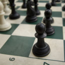 Which pieces in the game of chess are involved in castling?
