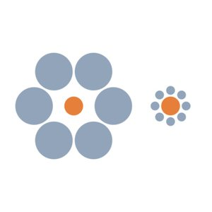 Which orange circle is larger?