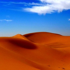 What is the world's second largest non-polar desert?