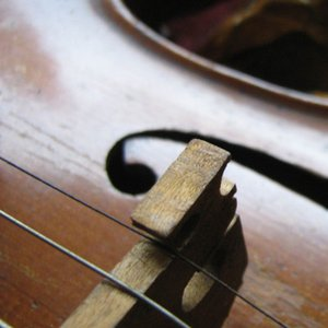 How many strings does a violin have?
