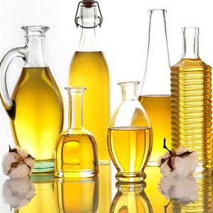 Which oil contains the least amount of cholesterol?