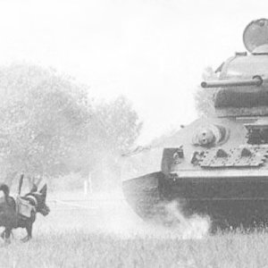Which army used anti-tank dogs during the WW2?