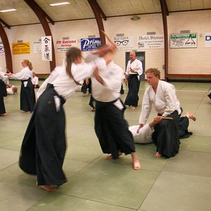 Which martial art involves the practices of defense against multiple attackers?