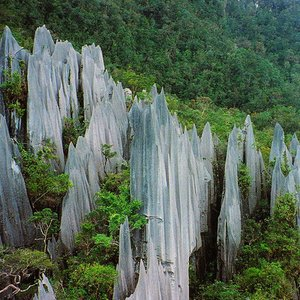 Gunung Mulu national park, a place with the most extensive cave system in the world, is located in which country?