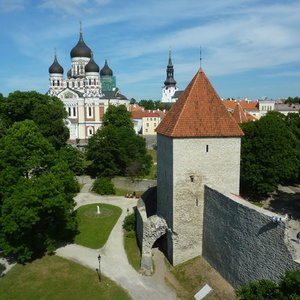 What is the capital city of Estonia?