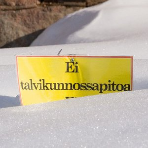 What is the second official language in Finland, with Finnish?