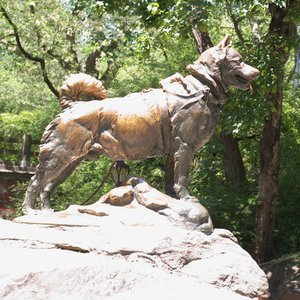 This is a statue of a heroic dog, erected in 1925 in Central Park. What was the dog's name?