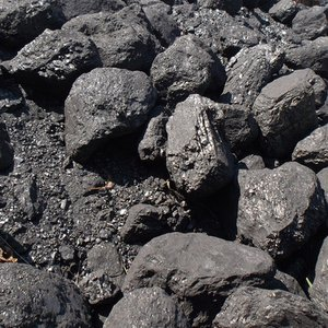 Which type of a coal is the youngest?