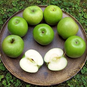 Which acid causes the sourness of green apples?