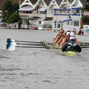 What is the traditional way of celebrating a win in rowing regatta.