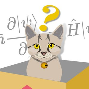 Schrödinger's cat is an experiment in the field of science;