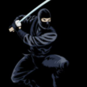 What was the name of the sword used by the Ninja?